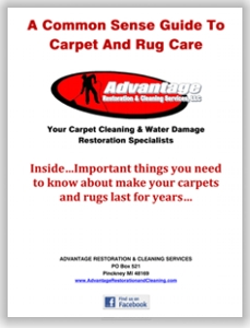 carpet care guide coupons