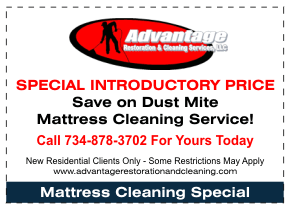Dust Mite Mattress Cleaning Special